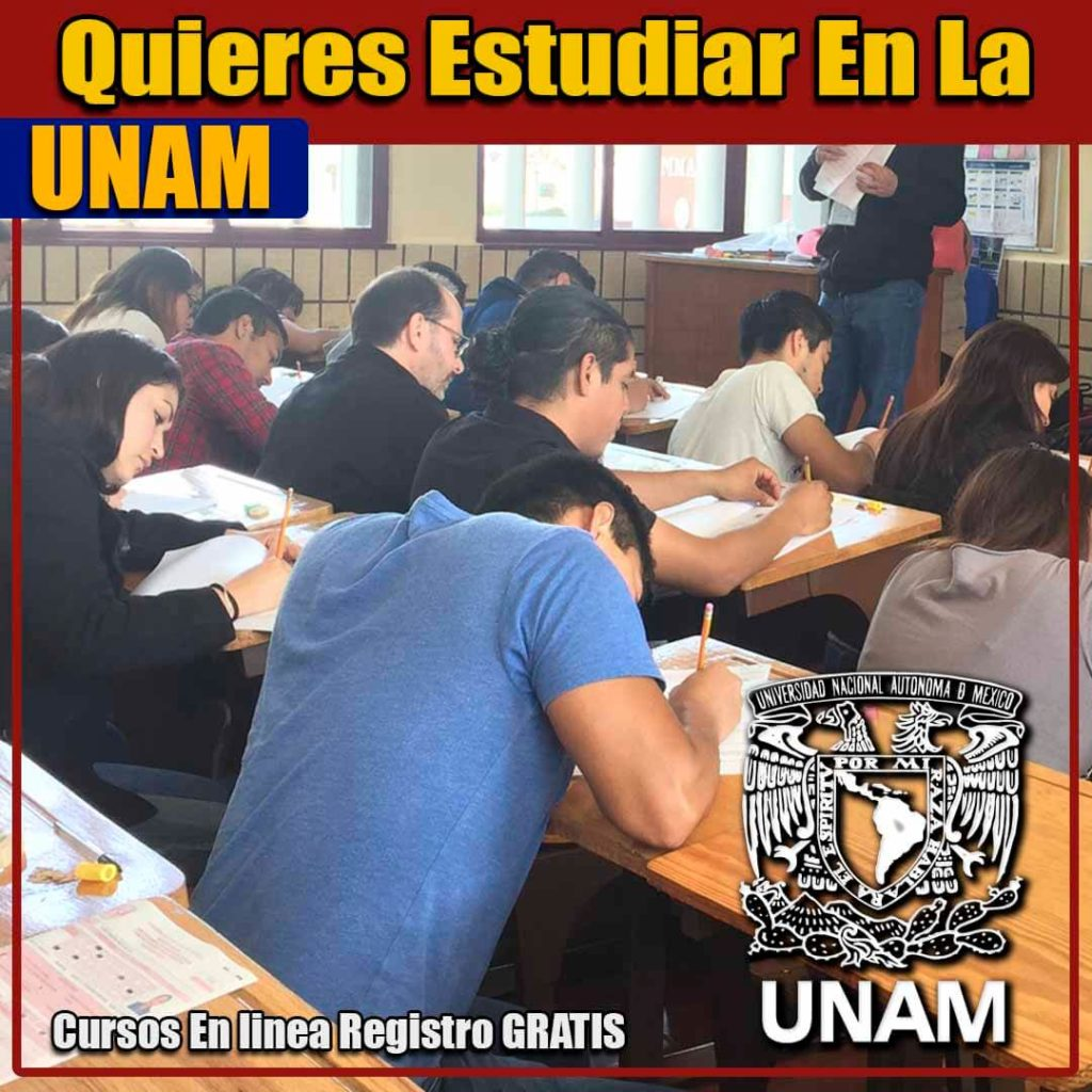 Los cursos en la UNAM
